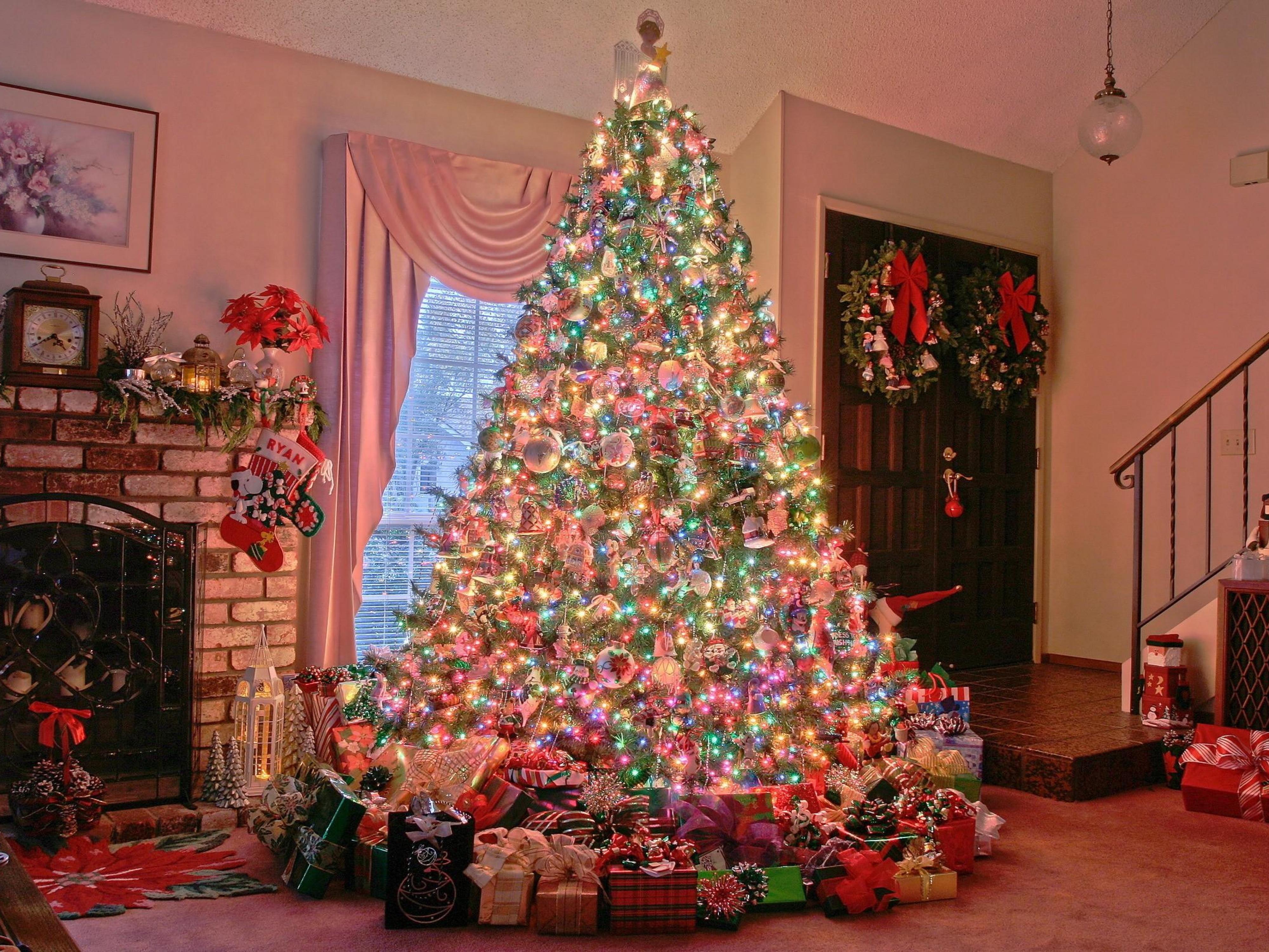 Фото новогодняя елка 2010 4